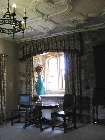 Thornbury, UK: one of the windows and the magnificent ceiling in the Howard