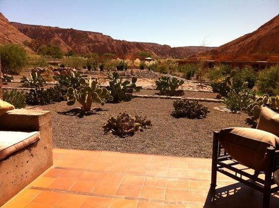 Alto Atacama Desert Lodge & Spa: Alto Atacama Hotel room view