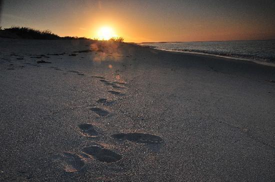 Salt Cay: sunset over the Beach