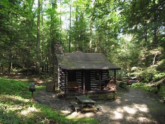 Holly river state park hacker valley 2018 all you need for River view cabins