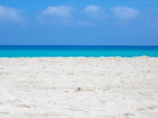 Hotel Krimar: Spiaggia maggio 2011