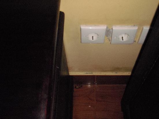 Uluwatu Gecko Inn: dead roach