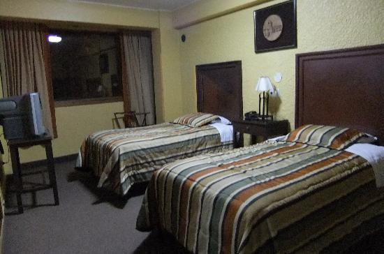 El Puma Hotel : 部屋