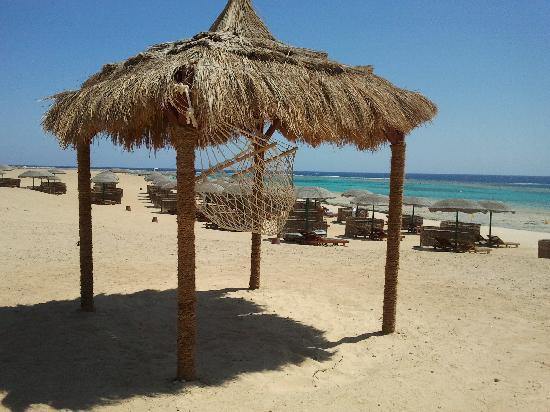 فندق جورجونيا بيتش: spiaggia Gorgonia
