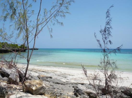 Chumbe Island Coral Park: Beach at Chumbe Island