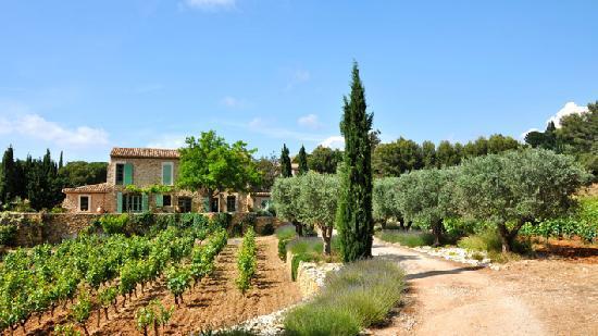 Le Castellet, فرنسا: Clos du Cas AOC Bandol
