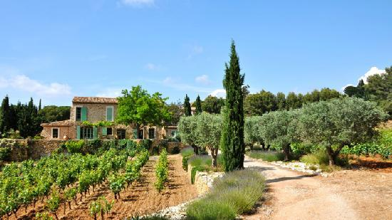 Le Castellet, Francja: Clos du Cas AOC Bandol