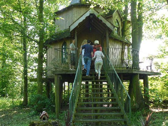 Fernie Castle Hotel Tree House Is Pefect Fantasy For Wedding Night