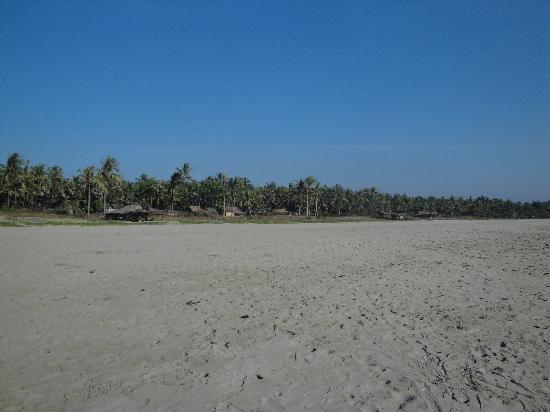 Sunny Paradise Resort: Plage
