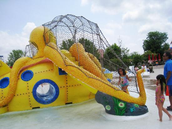 Agawam, MA: octopus slide - Hurricane Harbor