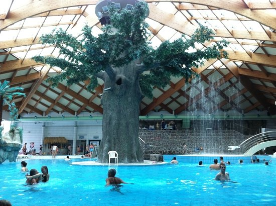 Catez, Σλοβενία: l'albero delle terme