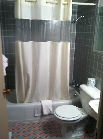 Plaza Motel : bathroom