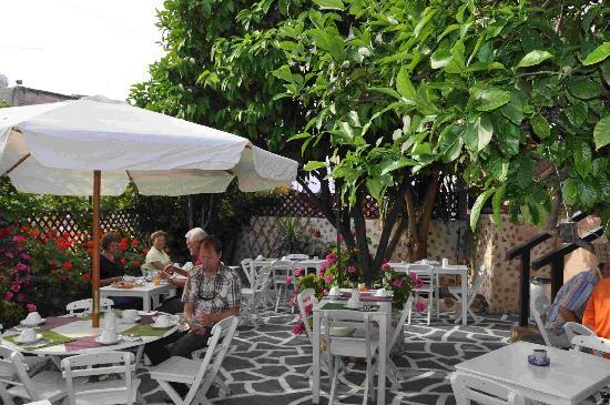 Hotel Attiki: Giatrdino della colazione