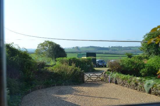 Middle Upcott Farm Bed and Breakfast: View from the upstairs window