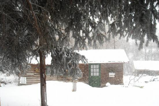 Four Mile Creek Bed and Breakfast: Our cabin (Creekside) in the Snow