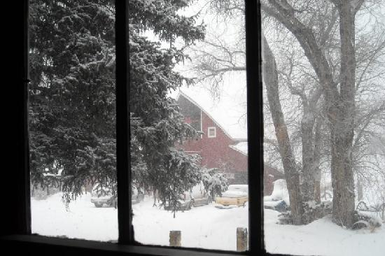 ‪‪Four Mile Creek Bed and Breakfast‬: View of the Historic Red Barn in snow taken f/ inside main house‬