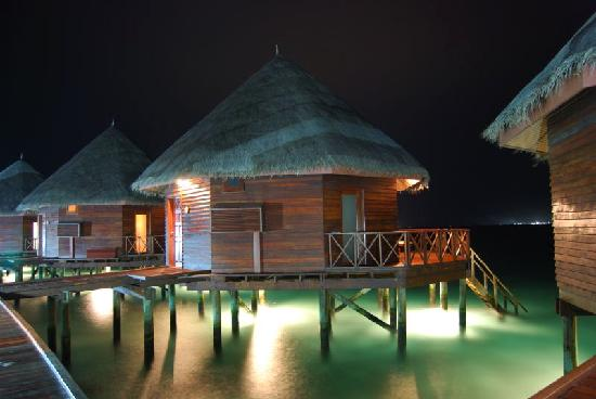 sting ray at the steps to our bungalow - Picture of ...