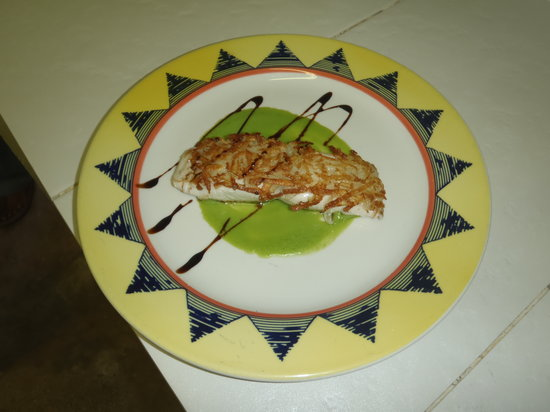 La Tartaruga: Mahi-Mahi with a crust of potatoes and creamed peas flavored with mint