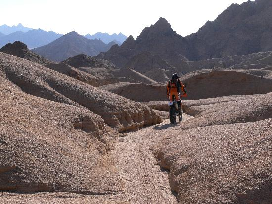 Ktm Egypt Calling Dakar Adventure Tours: KTM 450 EXC 2011 available