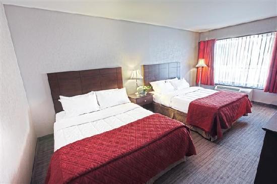 Hotel Universel Quebec: Chambre standard avec 2 lits Queens