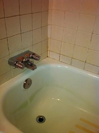Lincoln Motor Inn Fallsview: Dirty Bathroom
