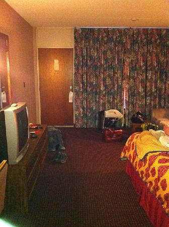 Lincoln Motor Inn Fallsview: The Nasty Room