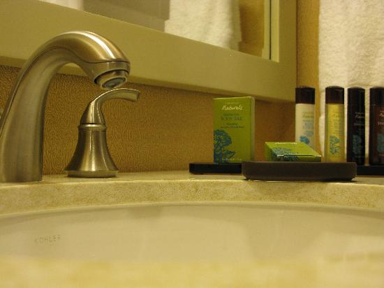 Embassy Suites by Hilton Houston Downtown: Restroom toiletries