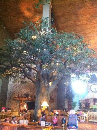 Great Wolf Lodge Grapevine: Tree in the Lobby