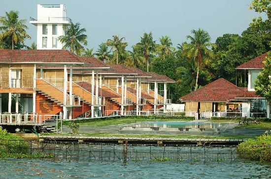 Swimming Pool Picture Of Edassery Kayal Resort Kumarakom Tripadvisor