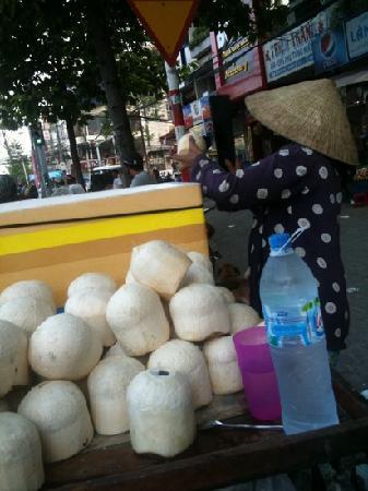 Trattoria Medan Sumatra: coconut's life