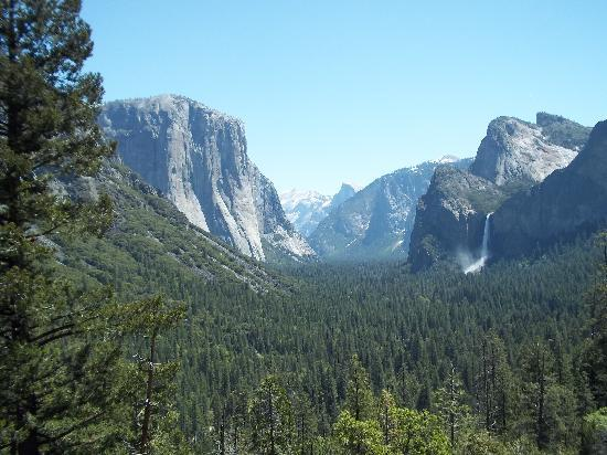 Yosemite West / Mariposa KOA: 45 minutes away