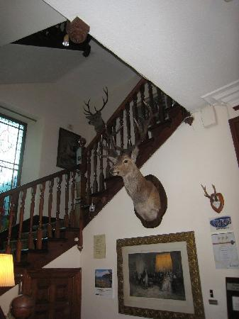 Dalrachney Lodge Hotel: typical local decor