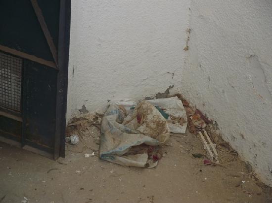 El Mouradi Djerba Menzel: Außenanlage Zugang zum Hallenbad