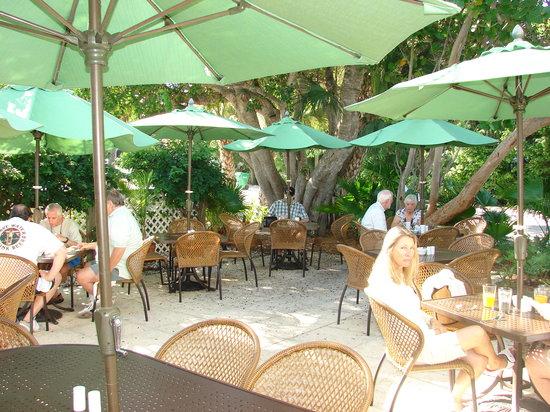 Third Street Cafe : garden patio