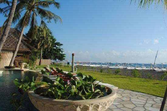 Palm Garden Amed Beach & Spa Resort : Aussicht vom Restaurant