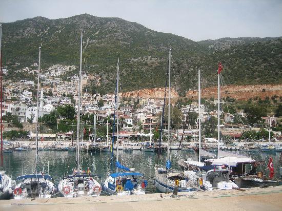 Yeni Korsan: The harbour
