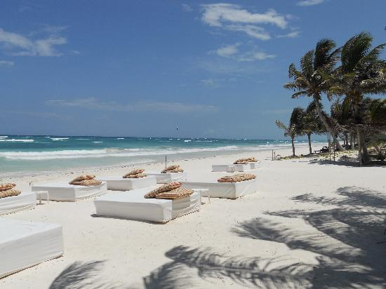 Hotel Cabanas Tulum: Our view at breakfast...
