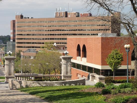 Sheraton Syracuse University Hotel & Conference Center: Sheraton behind Schine Student Center