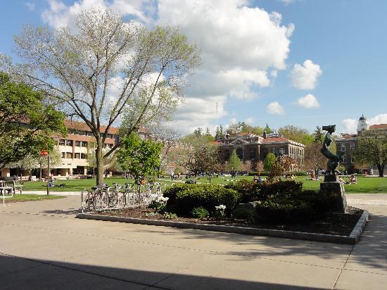 Sheraton Syracuse University Hotel & Conference Center: Quad