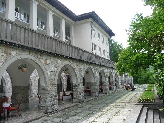 Vila Bled: villa