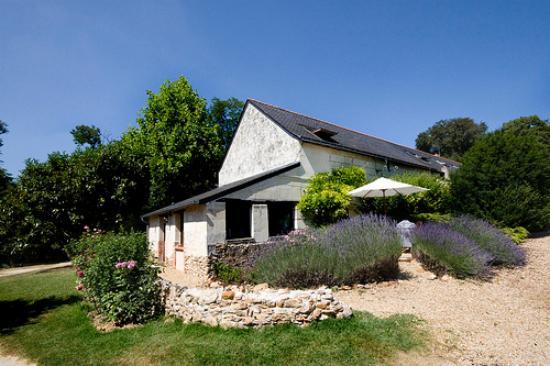 Le Logis du Pressoir Self Catering & Bed & Breakfast : Outside of the gite