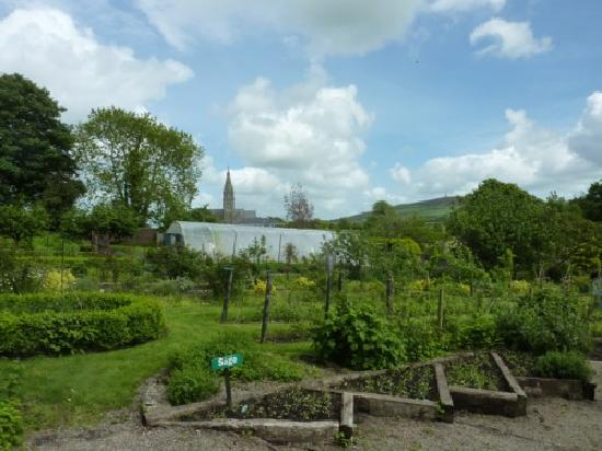 The Mustard Seed at Echo Lodge : The Mustard Seed Orchard