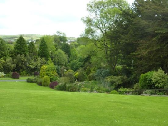 The Mustard Seed at Echo Lodge : The herbacious border and shrubbery