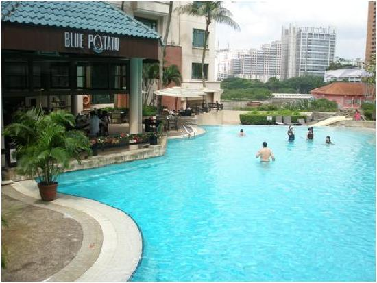 Nice Swimming Pool Picture Of Swissotel Merchant Court Singapore Singapore Tripadvisor