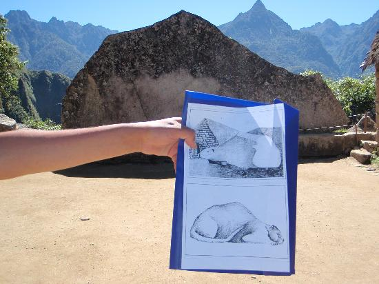 Machu Picchu, Perú: Guinea Pig interpretation of the rockshape