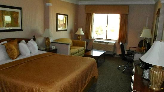 Best Western Plus Suites Hotel: Another View