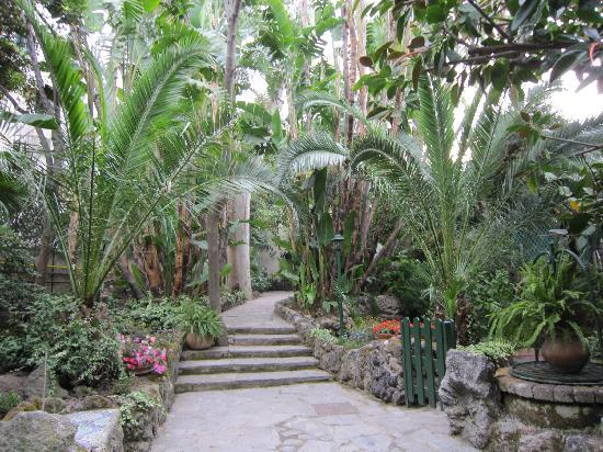 Ingresso giardino foto di hotel la villarosa ischia - Ingresso giardino ...