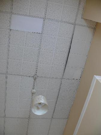 Morehampton Townhouse: Plafond en rapport avec le reste de l'hôtel