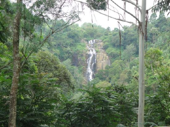 Waterfalls Homestay: Views