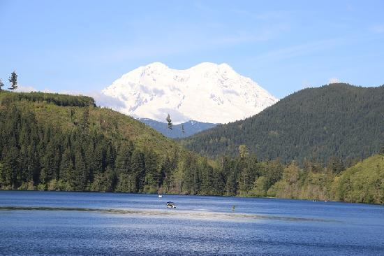Mineral Lake Lodge: view on mt rainier